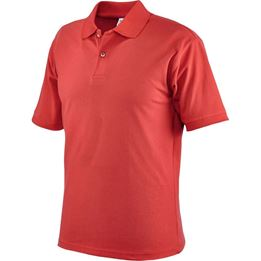 Picture of CASUAL POLO SHIRTS